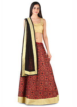 9rasa Rust N Brown Lehenga Choli