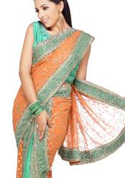 Attractive Sari