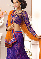 Purple Net A Line Lehenga Choli
