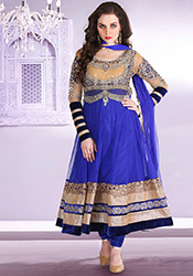 Splendid Net Anarkali Suit