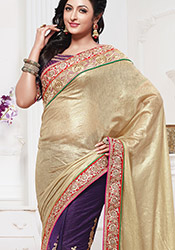 Blue and Beige Half and Half Saree