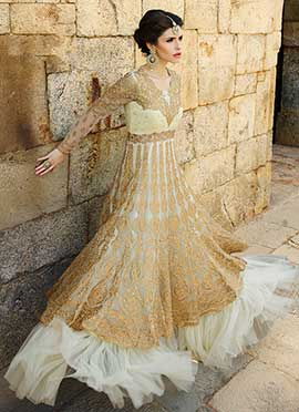 Cream N Beige Net Anarkali Suit