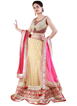 Dark Cream Net A Line Lehenga Choli
