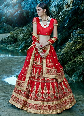 Foliage Designed Net Red A Line Lehenga Choli