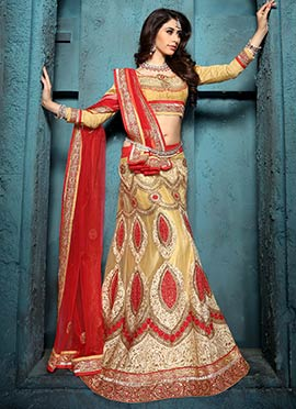 Golden Beige N Red Net Embroidered Lehenga Choli