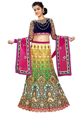 Multicolored Embroidered A Line Lehenga Choli