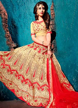 Red N Beige Net Embroidered Lehenga Choli