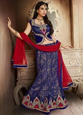 Stunning Blue Net Lehenga Choli