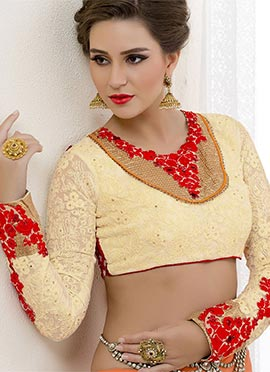 Cream Embroidered Georgette Blouse