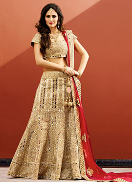 Beige Art Raw Silk A Line Lehenga Choli