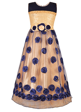 Beige N Blue Net Kids Gown