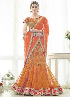 Beige N Orange Net A Line Lehenga Choli