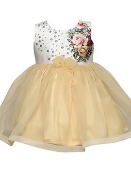 Beige Taffeta Silk Net Kids Dress
