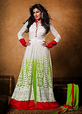 Chitrangada Singh Net Floor Length Anarkali Suit