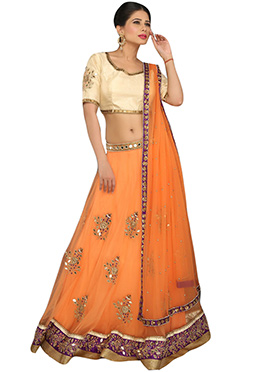 Light Orange Net A Line Lehenga Choli