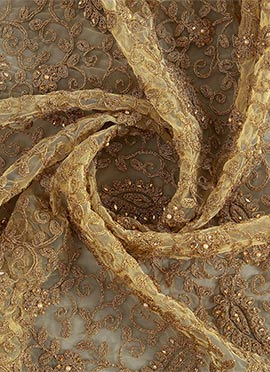 Gold N Beige Embroidered Net Fabric