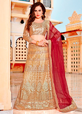 Golden Net A Line Lehenga Choli