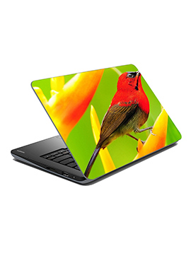 Green N Red Bird Laptop Skin